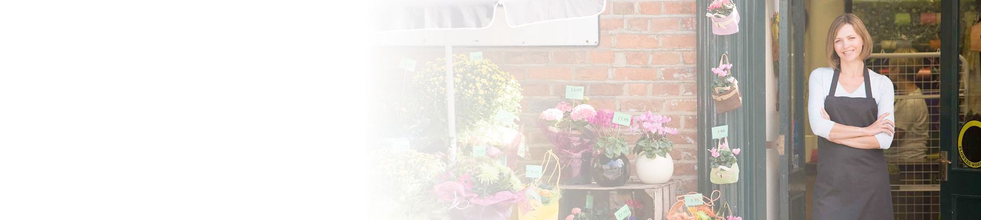 flower_shop_gradient